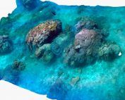 3D data mapping of coral reefs