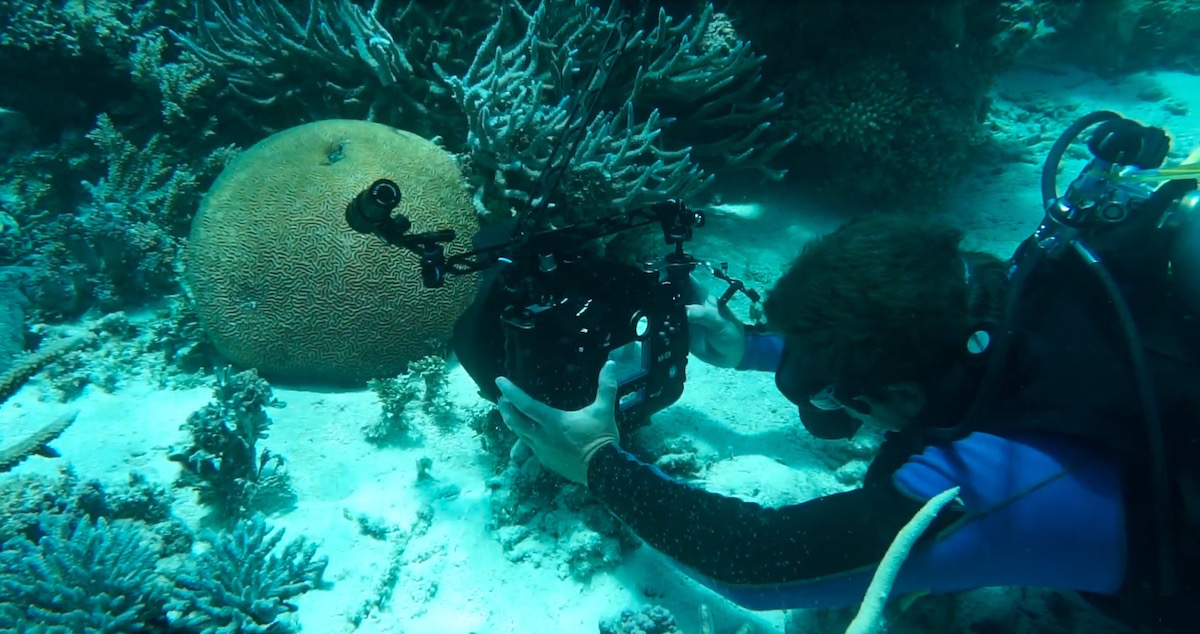 Scientists Capture Photographic Data to Protect Great Barrier Reef