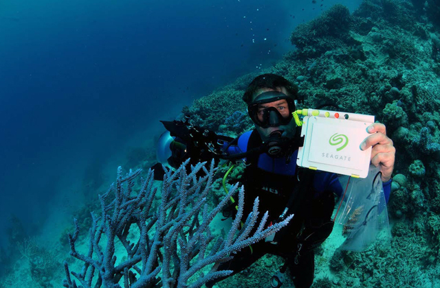 Scientists Tame a Sea of Data to Protect Great Barrier Reef