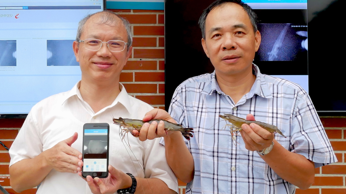 Professors Huang Ing-Jer (left) and Hung Chin-Chang showcase their team's research