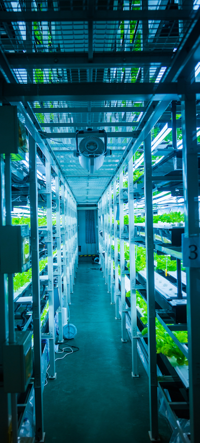 Data at the Edge smart agriculture