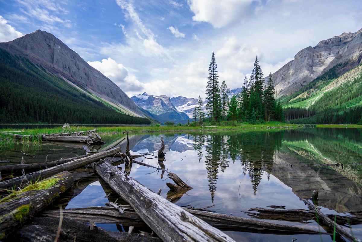 AndyBest_Alberta_StillWild-186